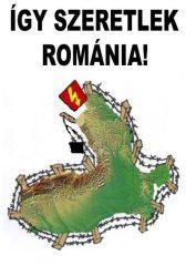 """Fa hűtőmágnes """"románia"""""""