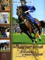 Magyar lovak - fókuszban a hazai lófajták -Novotni Péter