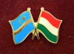 Kitűző Székely-Magyar zászló