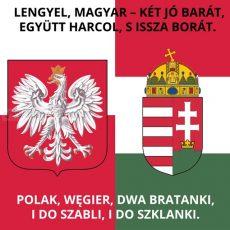 MAGYAR-LENGYEL BARÁTSÁG ZÁSZLÓ 90x90 cm