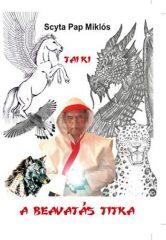 Taiki - A beavatás titka Scyta Pap Miklós Könyvműhely, 2014